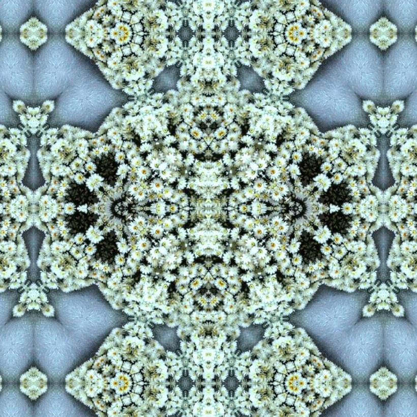 Kaleidoflowers 8