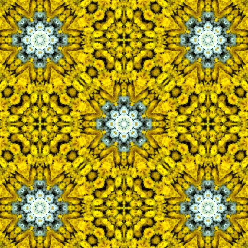 Kaleidoflowers 11
