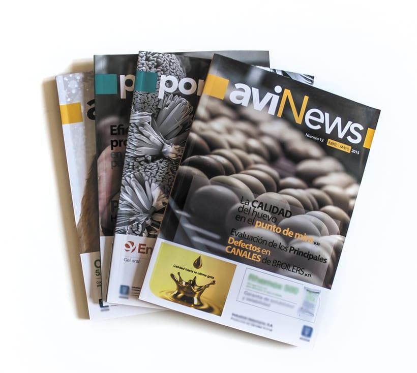 Maquetación de revistas, infografías... 0