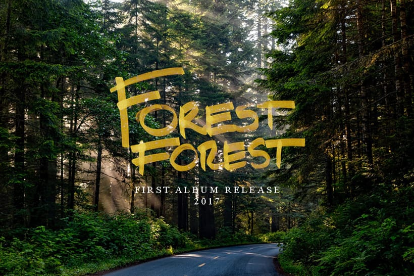Forest Forest Mx Wallpaper 1