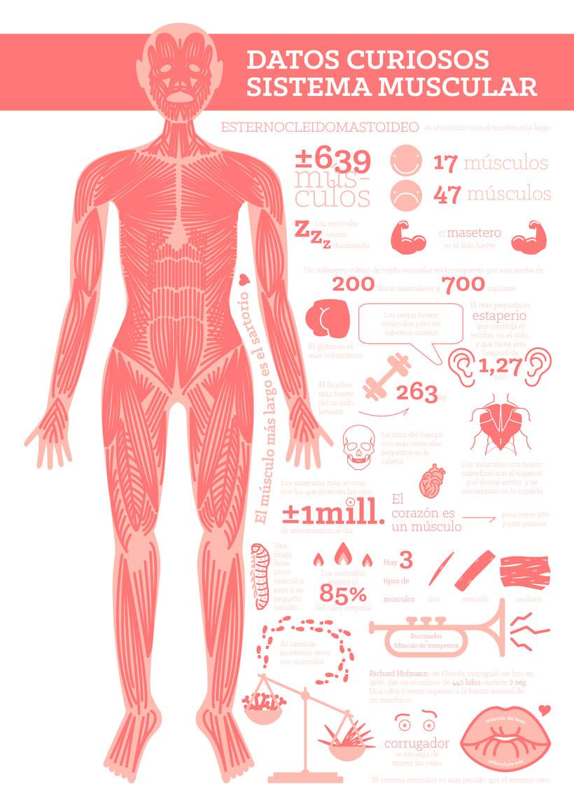 Cuerpo humano 1