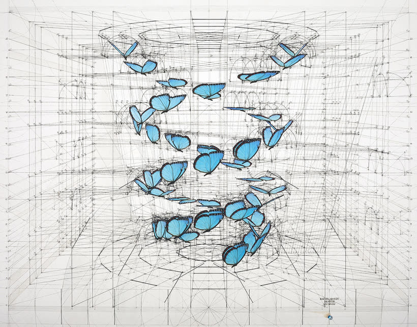 Rafael Araujo, ilustraciones matemáticamente perfectas 4