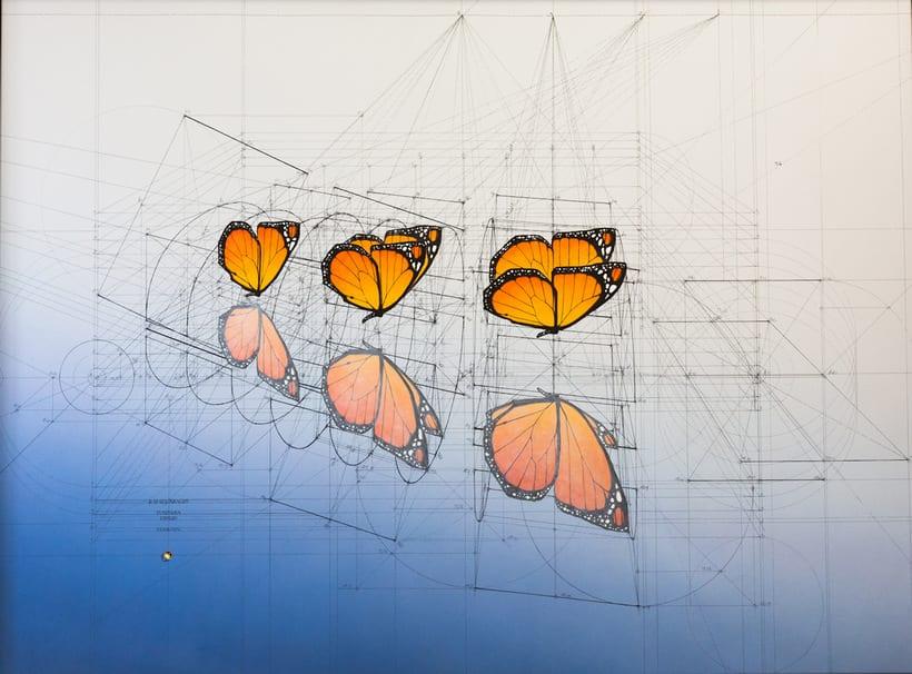 Rafael Araujo, ilustraciones matemáticamente perfectas 6