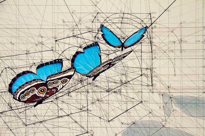 Rafael Araujo, ilustraciones matemáticamente perfectas 8