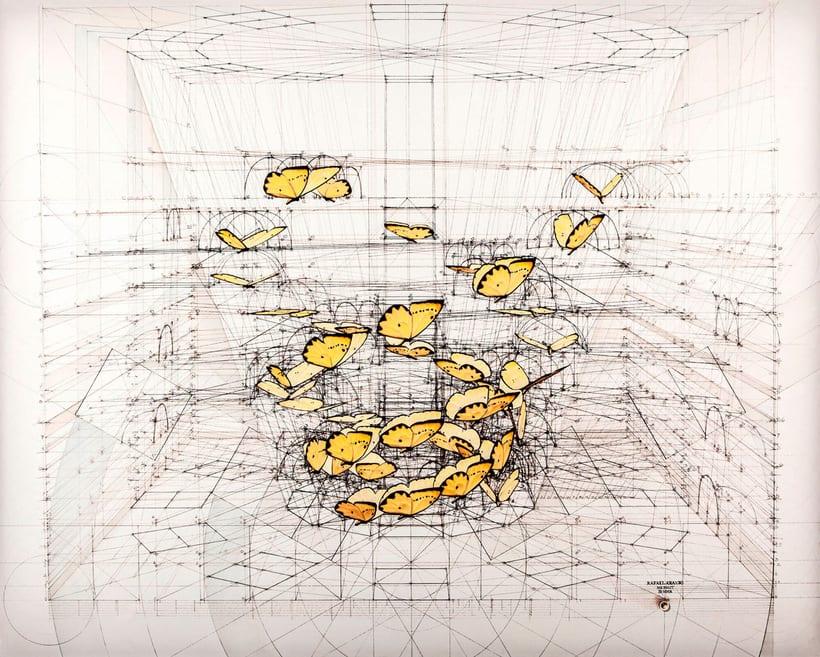 Rafael Araujo, ilustraciones matemáticamente perfectas 1