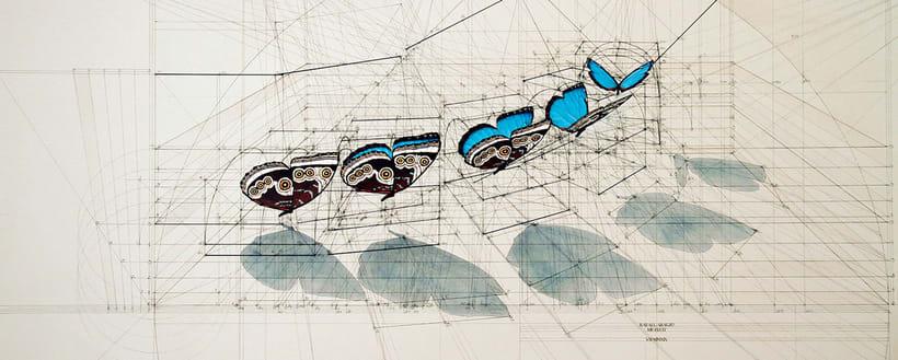 Rafael Araujo, ilustraciones matemáticamente perfectas 10