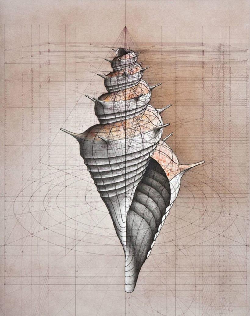 Rafael Araujo, ilustraciones matemáticamente perfectas 9