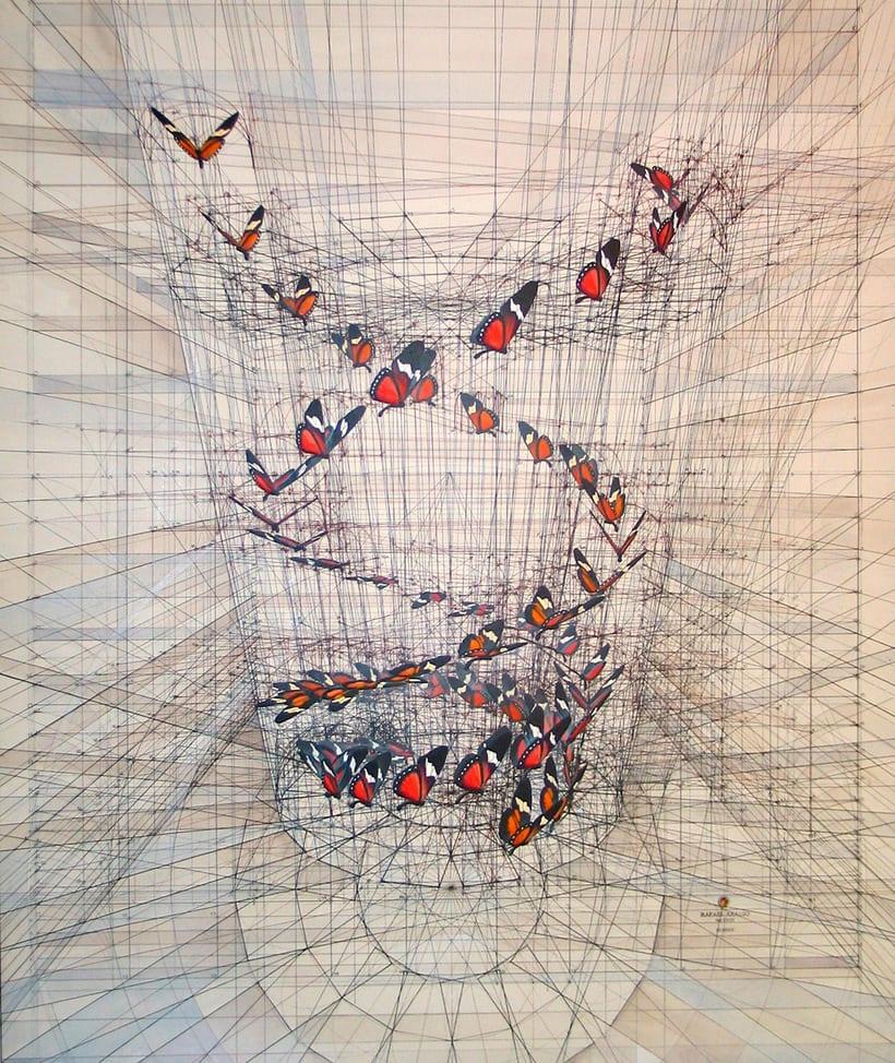 Rafael Araujo, ilustraciones matemáticamente perfectas 12