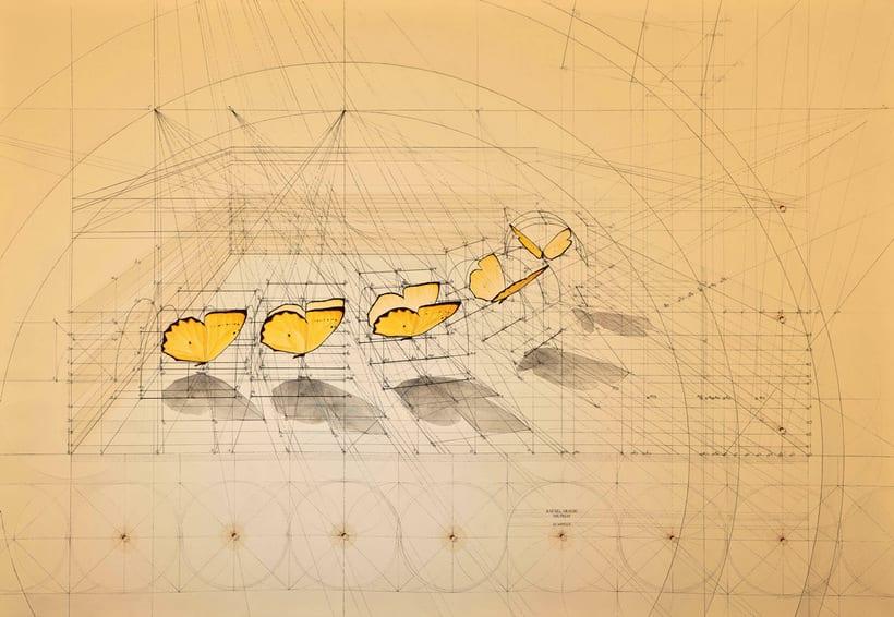 Rafael Araujo, ilustraciones matemáticamente perfectas 13