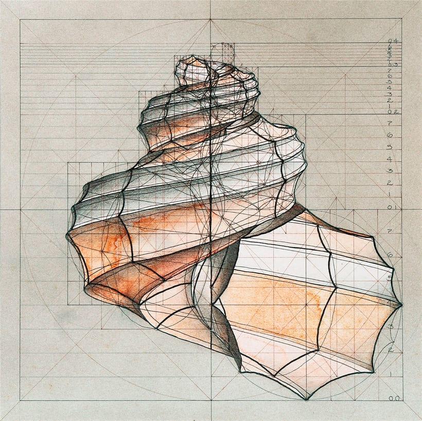 Rafael Araujo, ilustraciones matemáticamente perfectas 17