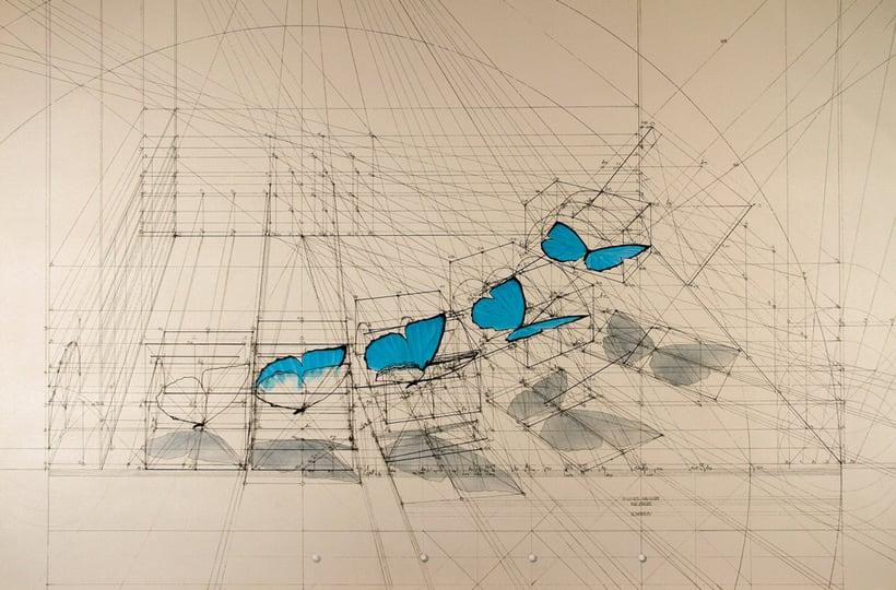 Rafael Araujo, ilustraciones matemáticamente perfectas 15