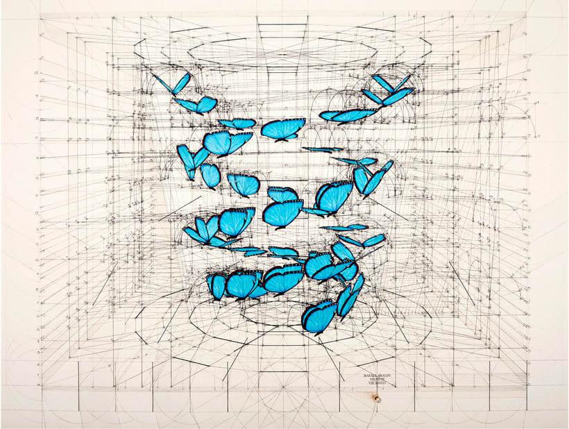 Rafael Araujo, ilustraciones matemáticamente perfectas 16