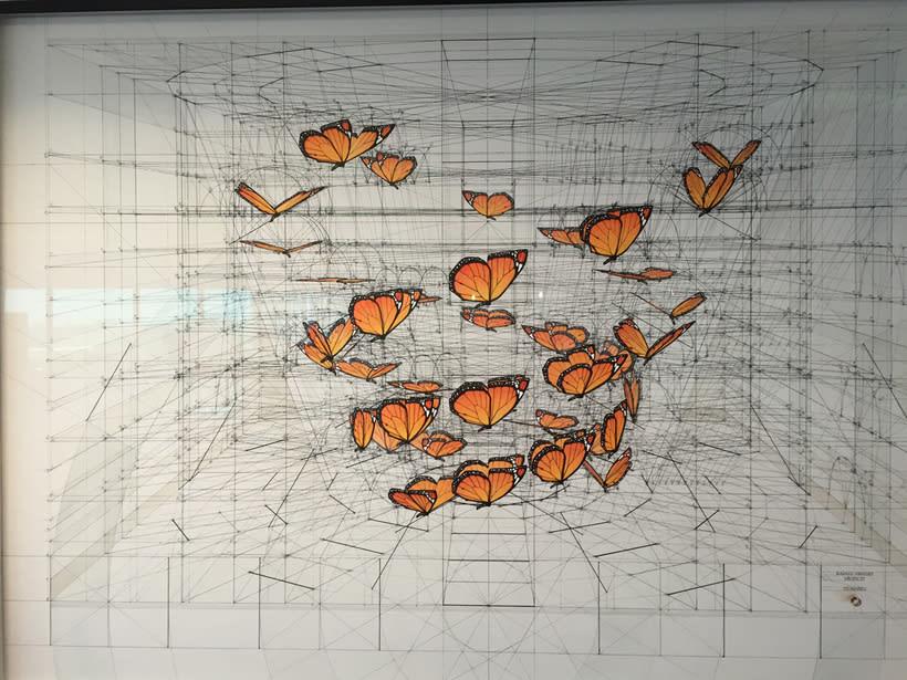 Rafael Araujo, ilustraciones matemáticamente perfectas 18