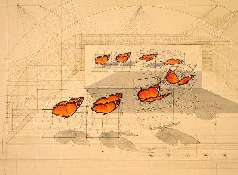 Rafael Araujo, ilustraciones matemáticamente perfectas 19