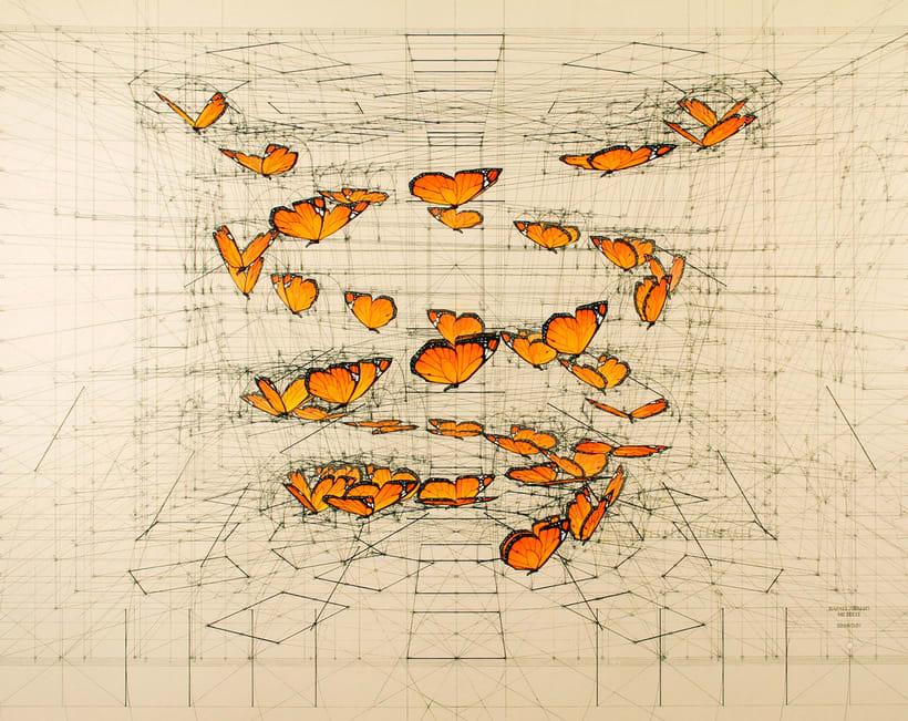 Rafael Araujo, ilustraciones matemáticamente perfectas 21