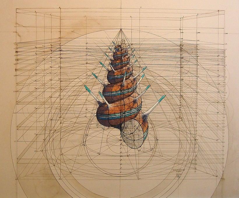 Rafael Araujo, ilustraciones matemáticamente perfectas 20