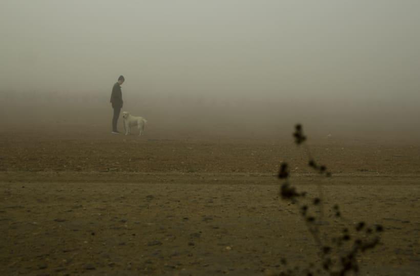 """""""El perro en la niebla"""" -1"""