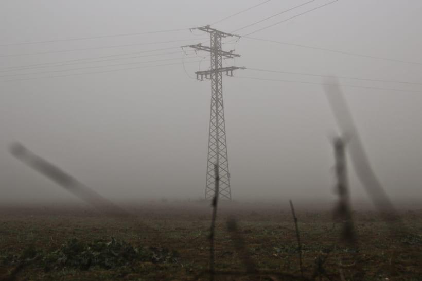 """""""El perro en la niebla"""" 4"""