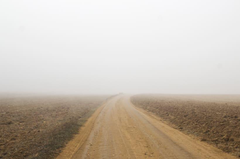 """""""El perro en la niebla"""" 12"""
