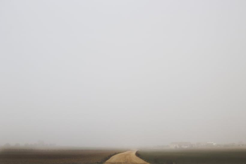 """""""El perro en la niebla"""" 18"""