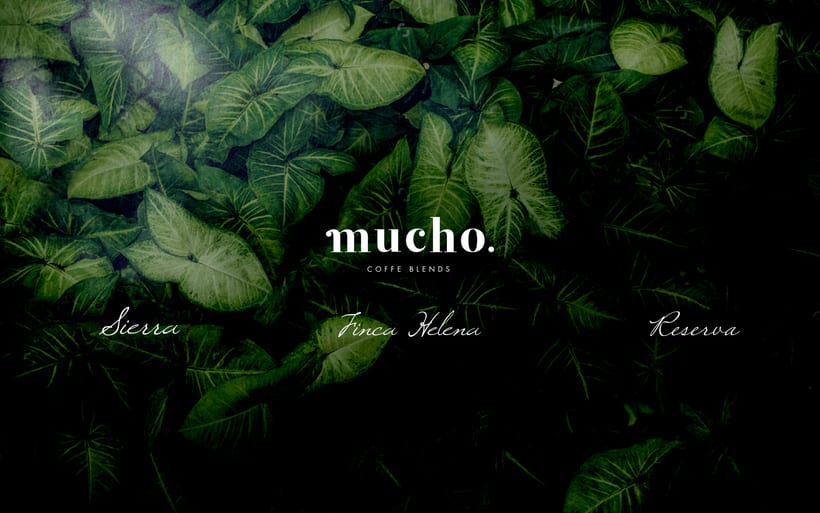 Mucho. Coffee Blends 6