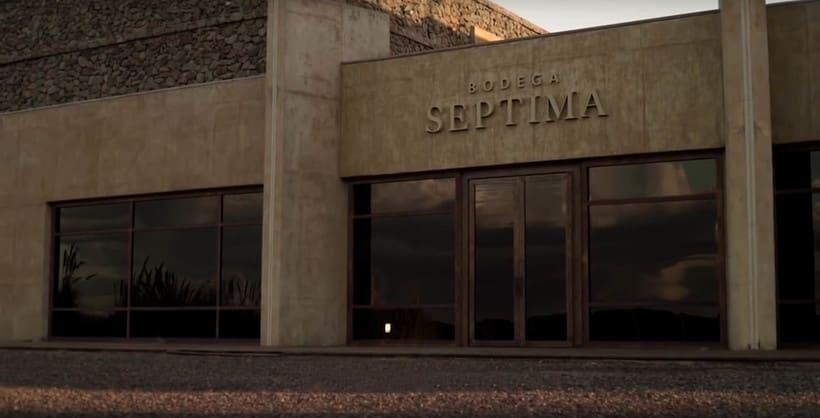 DISEÑO DE PACKAGING -  SEPTIMA GRAN MALBEC  de BODEGA SEPTIMA 6