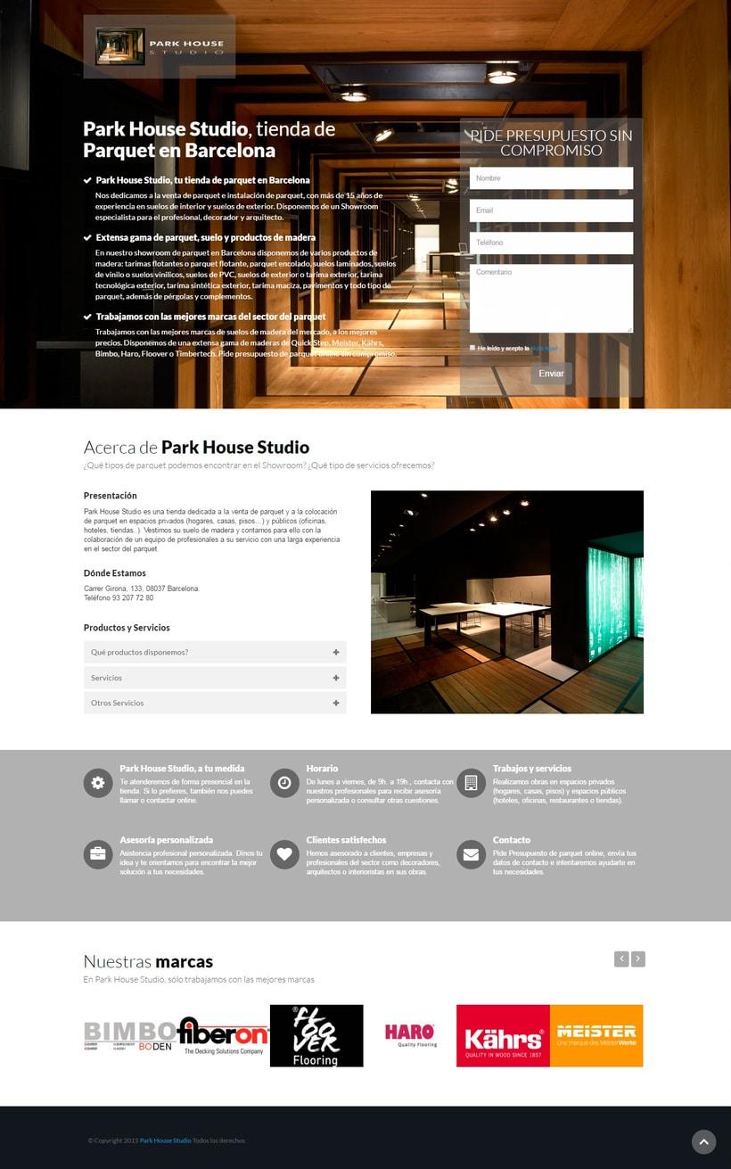 Campaña SEM y Landing Page - Park House Studio - 2015 0