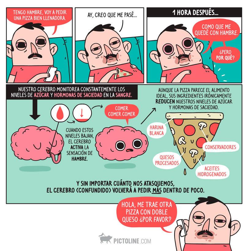 Pictoline: la revolución de la información ilustrada 24