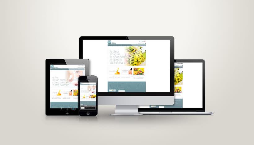 Diseño Web / Wordpress/ Css / Responsive 2
