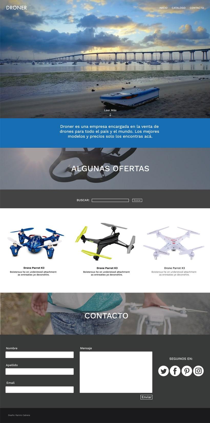 Entrega Diseño de Identidad Coorporativa para Web 8