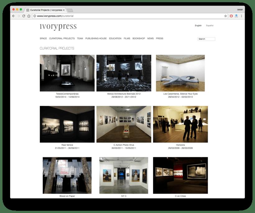 Ivorypress Página web para fundación de arte 6