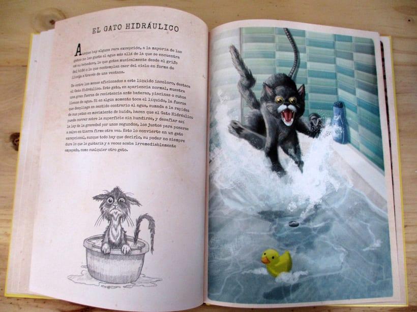Breve Gatopedia Ilustrada 11