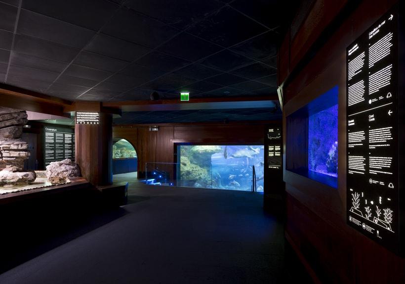 Aquarium Donostia-San Sebastián 0