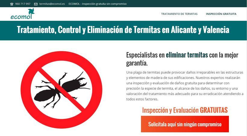 Tratamiento y eliminación de termitas Valencia | Tratamiento y eliminación de termitas Alicante 0
