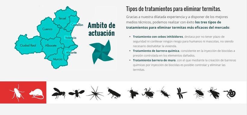 Tratamiento y eliminación de termitas Valencia | Tratamiento y eliminación de termitas Alicante 1