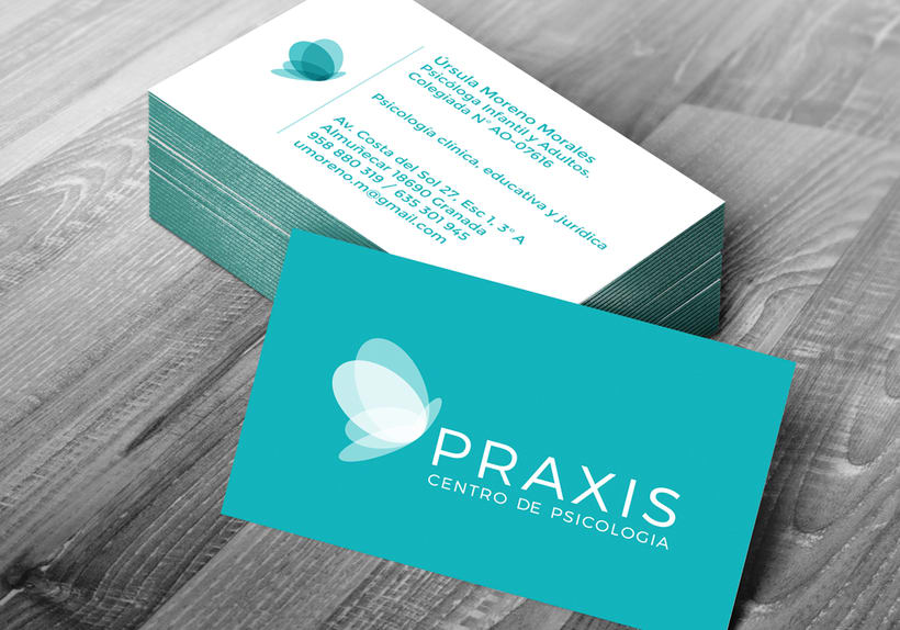 Praxis 'Centro de Psicología' 2