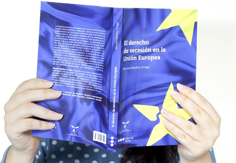"""Diseño de la cubierta del libro """"Derecho de secesión en la  Unión Europea"""" -1"""
