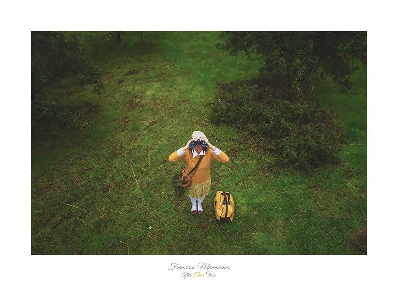 After The Storm y la influencia de Wes Anderson 7