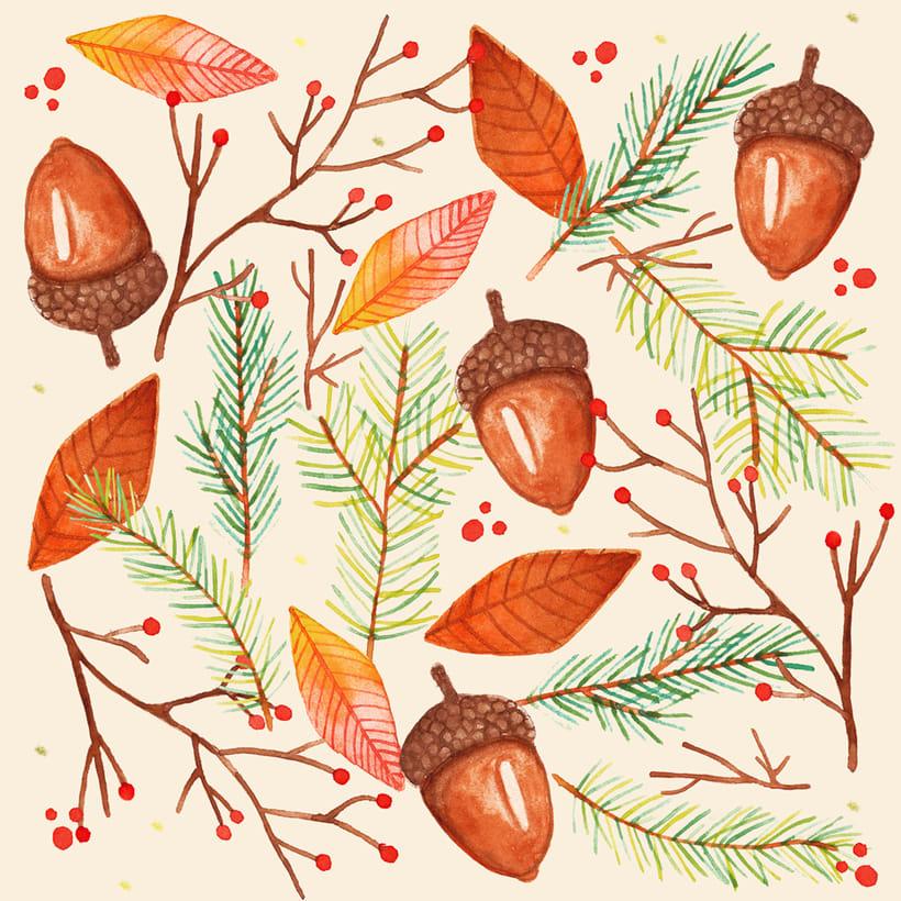 Pinus Nigra 5