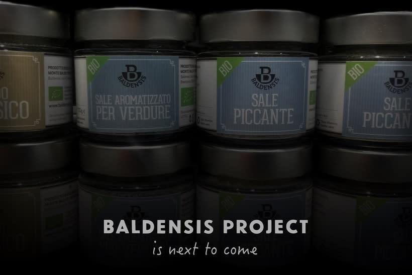 Baldensis -1