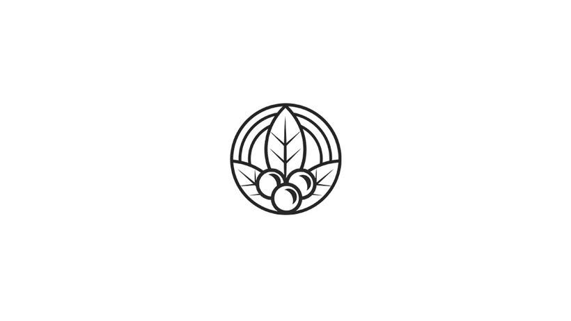 Brands & Logos 2016  4