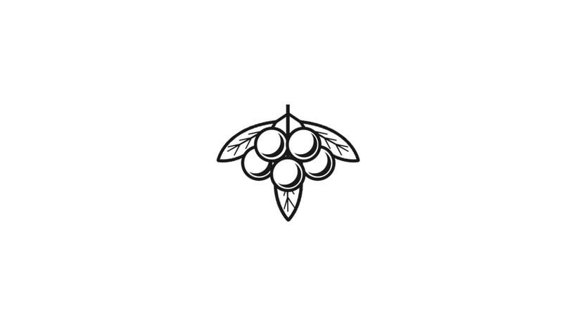 Brands & Logos 2016  8