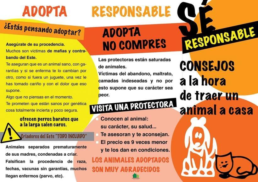 Proyecto concienciación Gatos de Masía 2