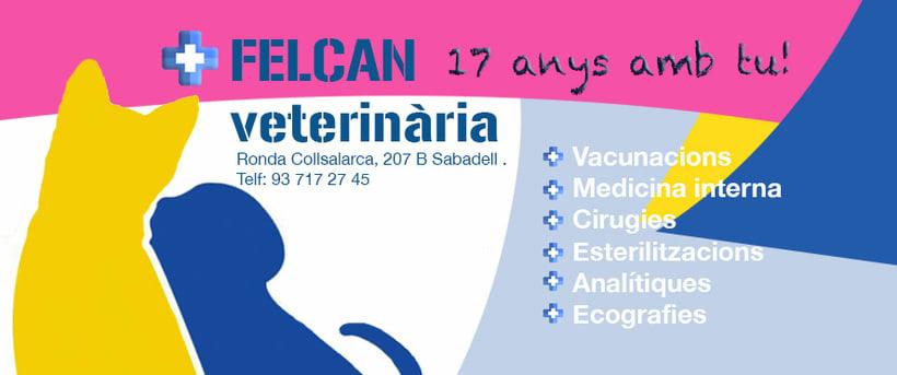 Felcan Veterinaria 0