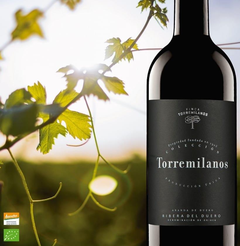 Carteles Torremilanos -1