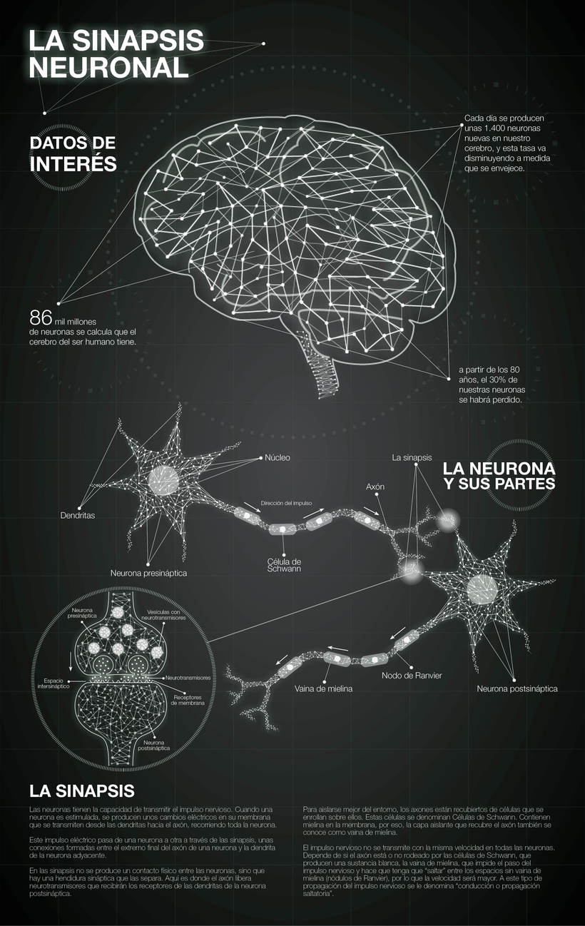 Acercar la ciencia a la gente. - Diseño de la información. - La sinapsis neuronal 1