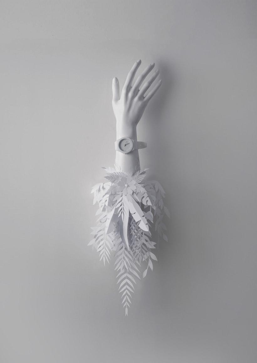 White in White -1