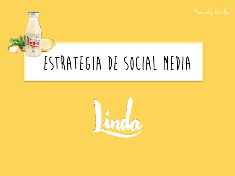 Linda. Proyecto del curso: Introducción al Social Media 7