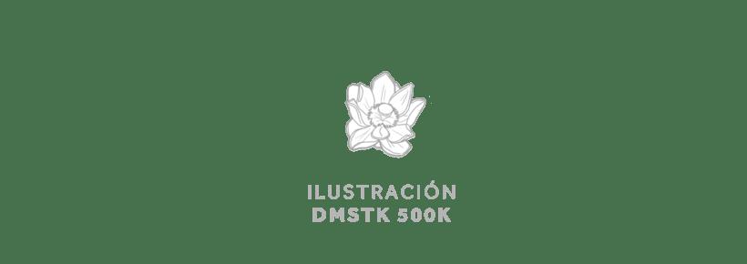 DMSTK 500K por Leon de la Cruz 0