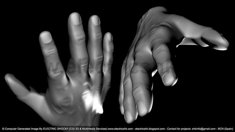 Manos 3D sin Textura 0